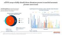 Sveobuhvatno genomsko profilisanje (CGP) u karcinomu prostate